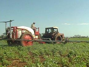 Protegen con medios biológicos unas 20 mil hectáreas de cultivos en Sancti Spíritus