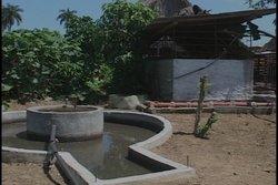 Los provechos del biogás