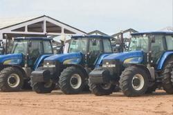 Amplio proceso inversionista favorece incremento de la producción de arroz