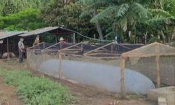 El biogás seduce a campesinos espirituanos