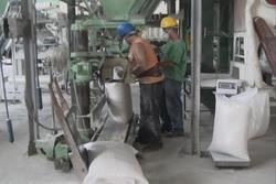 Incrementa Cuba producción nacional de granos para reducir las importaciones